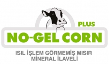 NO-GEL-CORN+PLUS
